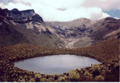 Laguna Alta (Julio, 1998)