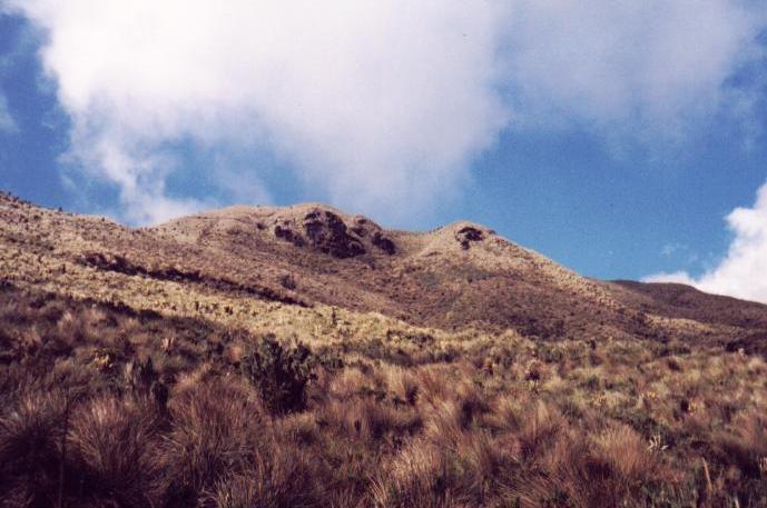 Cerro de la Virgen (Enero, 1998)