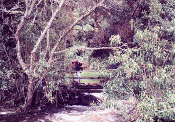 Río Quindío (Enero, 1999)