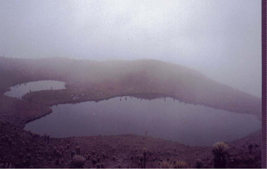 Laguna del Encierro (Enero, 1999)