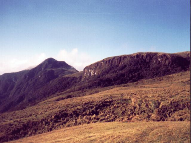 Cañ&oacuten del r&iacuteo Toche (Cerro de la Torre)